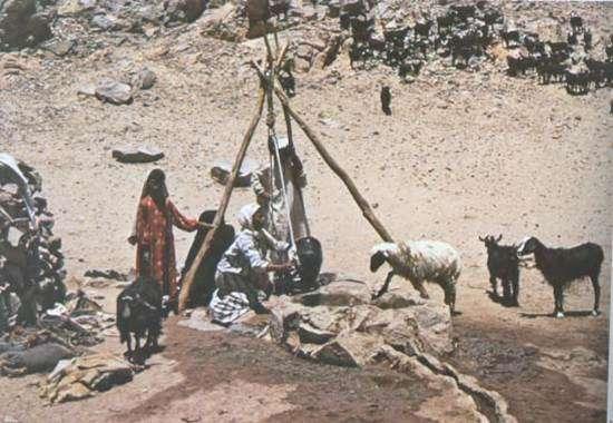 אהבת יעקב לרחל - מעובד לילדים (בראשית כט) שאיבת מים מבאר