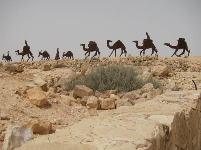 סיפורי התורה שיירת גמלים צולם על ידי בעבדת