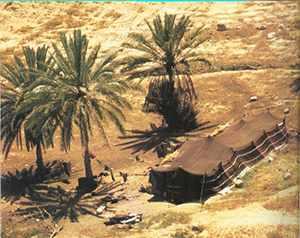 """חיי יום יום בישראל בתקופת התנ""""ך - ארמונות, בתים ואהלים."""