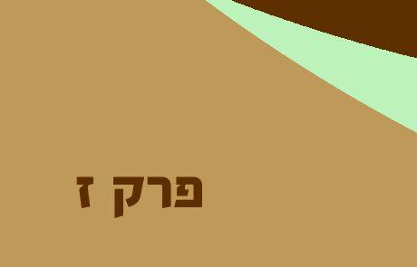 עמוס פרק ז – סיכומים פירושים והסברים