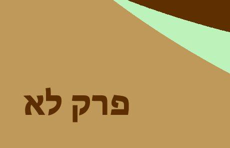 ירמיהו פרק לא – נבואת נחמה וגאולה לישראל