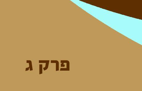 יונה פרק ג – פירושים, סיכום ומסרים