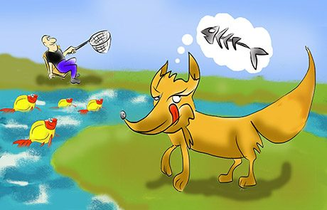 """אגדות חז""""ל: השועל והדגים"""