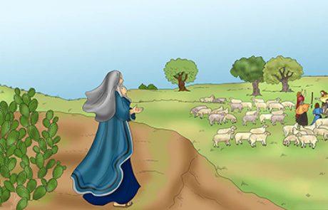 הפרידה של אברהם מלוט (בראשית יג)