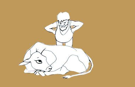 """אגדות חז""""ל: פרה שומרת שבת"""